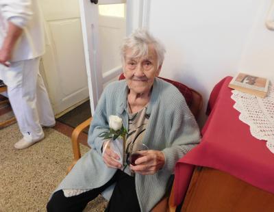 Szent Erzsébet rózsája